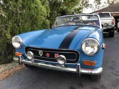 21 Best 76 mg midget images in 2018 | Mg midget, Faeries, Sprites