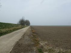 The never-ending horizon of The Fens....Dutch engineering on the left.