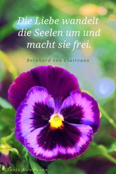 """""""Die Liebe wandelt die Seelen um und macht sie frei."""" (Bernhard von Clairvaux) www.mediveda.de"""