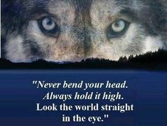 """"""".... Look the world straight in the eye."""""""