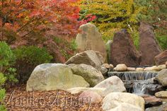 The Shigematsu Gardens at LCC