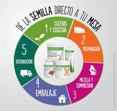 Lo mejor para los mejores. #Vida #Cambio #Nutricion  Contactanos: Movil: 316 331 00 73 Correo: bienestarhoyhlf@gmail.com