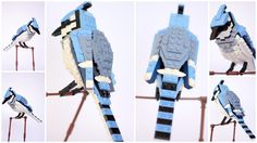 Along with the announcement that they are going to make a Lego set based on The Big Bang Theory, Lego has chosen another, more artistic theme to produce in the next round of Lego Ideas. Thomas Poulsom's Lego Birds Project hopes to see these sets in zoos, museums, wildlife centers and of course the Lego brand store.