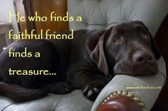 He who finds a faithful friend, finds a treasure.  Amen..
