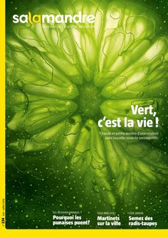 Vert, c'est la vie ! (N°234)