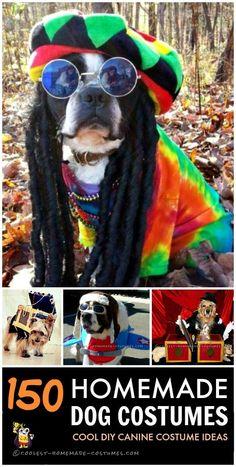 Coolest Pet Dog DIY Halloween Costumes                                                                                                                                                                                 More