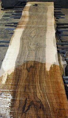 Awesome Claro Walnut log! Almost every board shows EXTREME heavy figure from top to bottom as well as amazing color and grain!