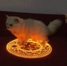 When you try to summon the devil but you end up summoning something of more evil