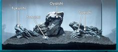 Iwagumi Rock Names; A guide to building an Iwagumi-influenced aquascape.