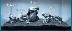 Iwagumi Rock Names; A guide to building an Iwagumi-influenced aquascape.