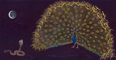 © James Prosek, Peacock and Cobra, 2013, watercolor, gouache, colored pencil, and graphite on paper, courtesy of the artist and Waqas Wajahat, New York
