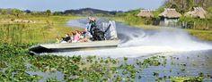 Airboat tour at Billie Swamp Safari, Clewiston Billie Swamp Safari