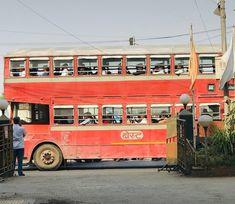 Mumbai, Travel, Vintage, Viajes, Bombay Cat, Destinations, Traveling, Vintage Comics, Trips