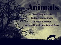 This four product bundle includes Classifying Animals, Endangered Animals, Invent an Animal Project, Write a Non-fiction Animal Book It includes about 130 pages of activities, Powerpoint presentations, writing activiites for higher level thinking skills, problem solving skills, and assessing. It also has riddles, rubrics, an assessment, and more.
