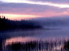 A morning curtain of mist hangs over the lake as the sun come up to warm the air . Photographed By Teresa Albert