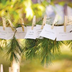 Escort cards and fresh springs of white pine were displayed on a clothesline, Lake Michigan Wedding Chic Wedding, Rustic Wedding, Wedding Ideas, Wedding Stuff, Centerpiece Decorations, Wedding Decorations, Karten Display, Lake Michigan Wedding, Printable Wedding Invitations
