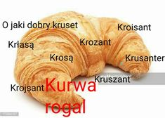 Po co się męczyć to rogal jest Dankest Memes, Funny Memes, Polish Memes, Quality Memes, I Cant Even, Wtf Funny, I Laughed, Haha, I Am Awesome