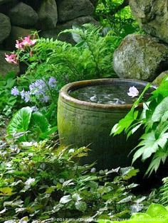 Tropical Garden Landscaping This water bowl would look so nice and cooling in my shade garden! Small Water Features, Water Features In The Garden, Small Garden With Fountain, Cottage Garden Design, Small Garden Design, The Secret Garden, Secret Gardens, Pot Jardin, Woodland Garden