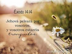 Éxodo 14:14 Jehová peleará por vosotros, y vosotros estaréis tranquilos. ♔