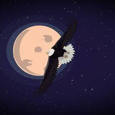 Àqueles que voam alto feito as águias, enxergam como elas, renovam sua vida sempre que preciso, são vencedores porque não têm medo de viver nas alturas, realizando sonhos impossíveis.