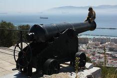 """Gibraltar. Das kleine Fitzelchen Großbritannien im äußersten Süden Spaniens ist faszinierend. """"Hässlich, teuer, braucht ihr nicht hin"""", hören wir immer wieder, von Spaniern und Deutschen gleichermaßen. Lieber Ronda, lieber Tarifa, lauten die Tipps. Und während wir im Fall Andorra auf solche Ratschläge gehört haben, wollten wir Gibraltar trotz allem nicht verpassen. Zum Glück, denn wir … … Weiterlesen →"""