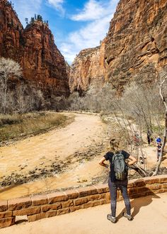 Riverside Walk in Zion National Park, Utah, See inside for tips on Zion and our Utah family road trip.   #travel #Utah #familytravel #zionnationalpark