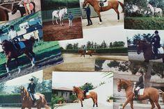 Memories and one of my great passions | Recuerdos y una de mis grandes pasiones