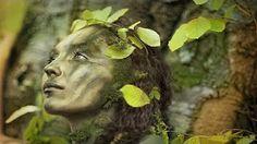Relaxing Celtic Music: Beautiful Music, Harp Music, Flute Music, Peaceful…