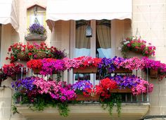 balcón-espectacular-flores