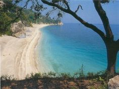 Plaka beach pelion greece - one of the most beautiful greek beaches Apartments Pelion Felitsia