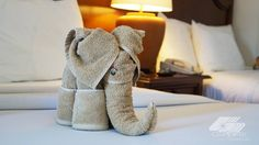 A nuestras camaristas les gusta sorprender a los huéspedes con creativas figuras con toallas que encontrarás en cualquiera de los cuatro hoteles Solaris