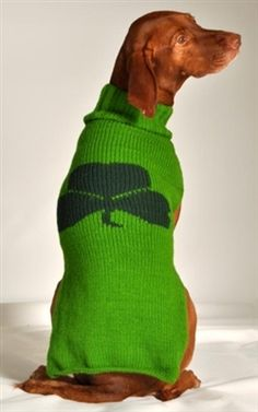 Because every dog's an Irish Setter on St. Patrick's Day.