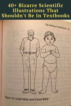 Prepare to laugh out loud as you scroll through these scientific drawings that definitely would not make it into textbooks today. Funny Corny Jokes, Crazy Funny Memes, Really Funny Memes, Funny Facts, Hilarious, Laughing Jokes, Laughing So Hard, Cute Stories, Weird Stories