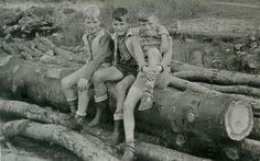 Westenholte : 3 jongens ,zittend op boomstammen (bij houthandel/zagerij van Dijk…
