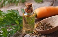 If you notice uncontrollable frizz, dryness, and split ends then you may be experencing hair breakage. Read on to know the treatments to stop hair breakage. Carrot Seed Essential Oil, Carrot Seed Oil, Carrot Seeds, Natural Essential Oils, Natural Oils, Therapeutic Essential Oils, Pure Essential, Health Benefits Of Carrots, Carrot Benefits