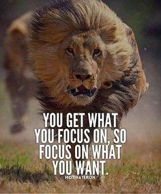 Yoga Quotes : Motivational Quotes 377 Motivational Inspirational Quotes for success 101 Source by karpyszyn Motivational Quotes For Depression, Short Inspirational Quotes, Great Quotes, Great Sayings, Small Motivational Quotes, Quotes For Men, Motivational Message, Citation Lion, Lion Quotes
