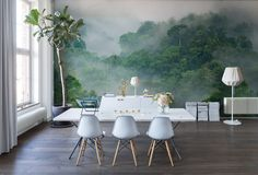 Wall mural R15062 Misty Forest