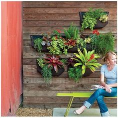 Vertical Garden by liza #greenwithenvy #lifeinstyle