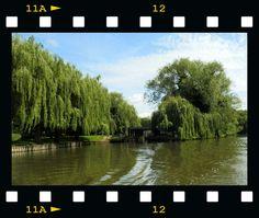 Visit to Stratford 2014