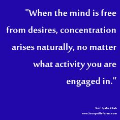 free your mind from desires
