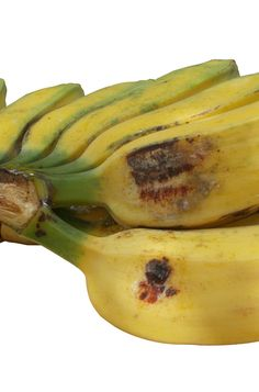 Photo about Banana fruits in one cluster, saba banana isolated in white background. Image of group, fruitage, background - 97663887 Banana Fruit, Fruits Images, Banana Recipes, Stock Photos, Group