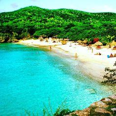 curacao esta playa es increible !!  esta llena de conchitas