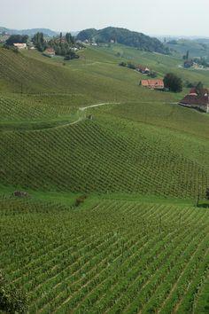 Sudsteiermark Vineyard, Outdoor, Wine, Outdoors, Vine Yard, Vineyard Vines, Outdoor Games, The Great Outdoors