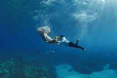 Underwater Wedding Portraits in Maui   ALK3R