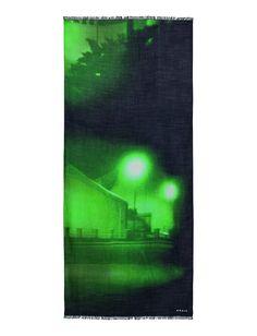 """Thomas Ruff """"The Nights Series was created using residual lights amplifiers in urban areas near Dusseldorf, Germany, the home of Thomas Ruff. From the Fall/Winter 2014 Collection."""
