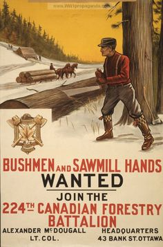 Examples of Propaganda from WW1 | Canadian WW1 Propaganda Posters