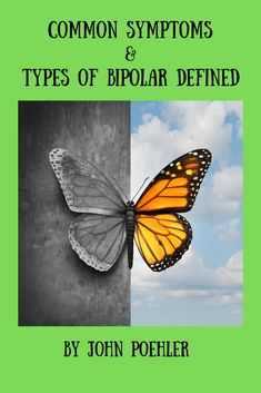 What is the definition of bipolar disorder? This article covers the different types of bipolar disorder along with their common symptoms. Bipolar Disorder Types, Bipolar Type 2, Generalized Anxiety Disorder, Panic Disorder, Stress Disorders, Chronic Illness, Mental Illness, Chronic Pain, Fibromyalgia