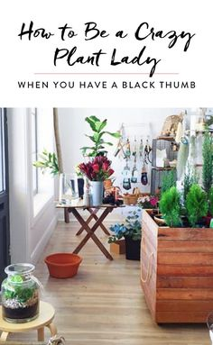 How to Be a Crazy Plant Lady When You Have a Black Thumb #purewow #home #decor