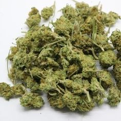 Sticks and Stems SeaWeed is great for burning BIG fat ones or making some great edibles. The high THC content helps when reducing, and offers great returns when extracting. Buy Edibles Online, Buy Cannabis Online, Weed Shop, Buy Weed, Weed Strains, Indica Strains, Vegan Gummy Bears, Weed California, Weed Buds