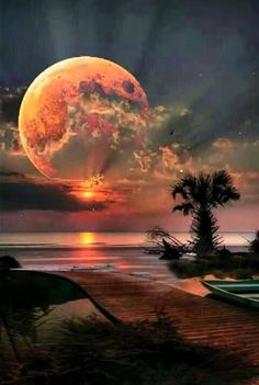 The beauty of nature awesome Beautiful Moon, Beautiful World, Beautiful Places, Shoot The Moon, Nature Pictures, Pictures Of The Beach, Full Moon Pictures, Moon Pics, Science And Nature